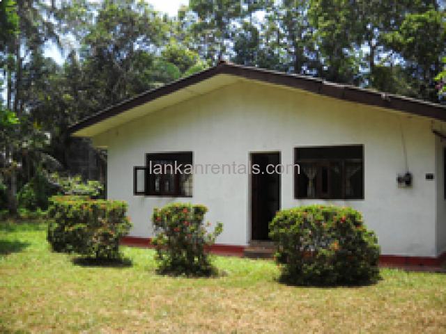 Ja-Ela bungalow house for rent