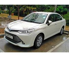 2016 Axio Hybrid for Rent