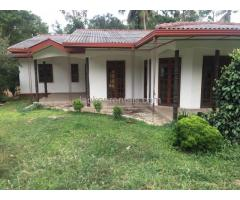 House for rent in dambulla